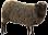 Sheep Wanted
